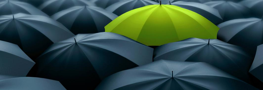 Umbrella Insurance Cover
