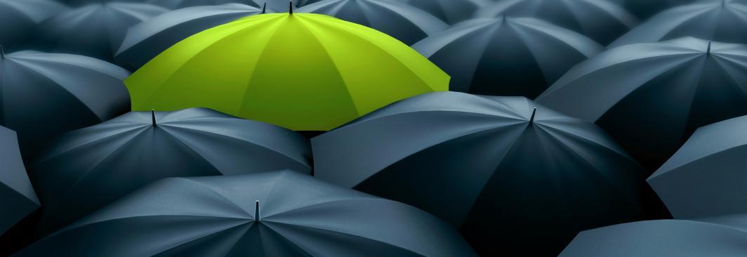 Umbrella Liability Cover